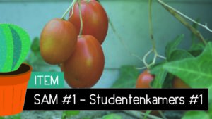 Item – SAM #1 // Studentenkamers #1