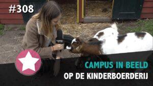 #308 - Op de Kinderboerderij